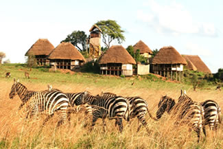 KIdepo Lodges