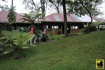 nkuringo-gorilla-camp-08
