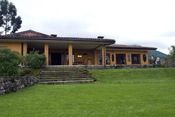 silverback lodge